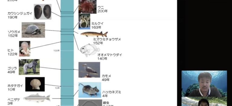 オンラインセミナー6/5(金)「貝を用いた環境解析」